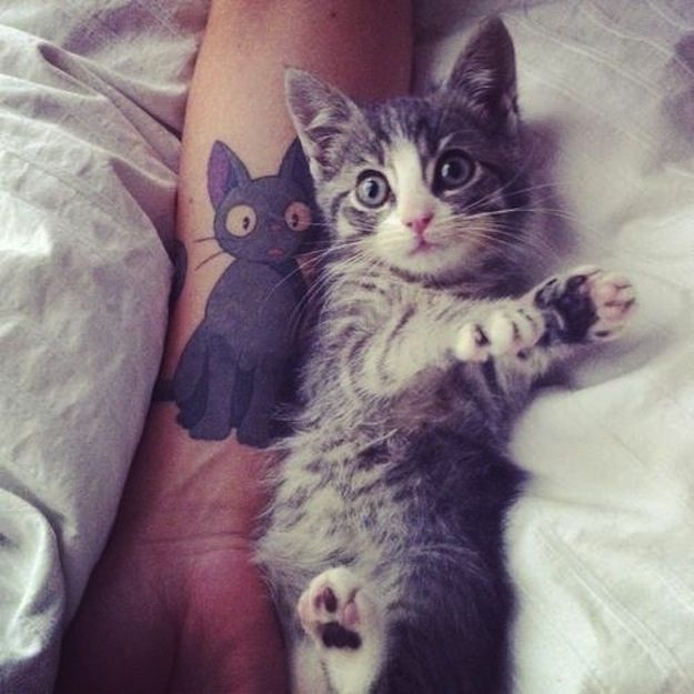 gatito con cara de sorpresa junto a un tatuaje de un gato con cara de sorpresa