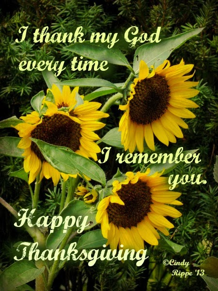 Sunflowers, Thanksgiving, Philippians 1:3, Cindy Rippe, Giving Thanks, Autumn Flowers