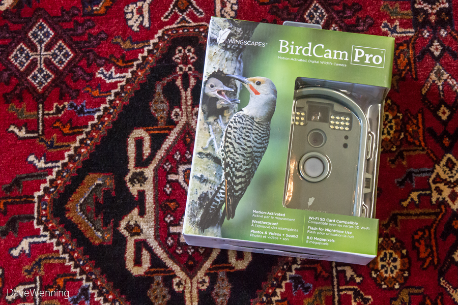 there 39 s a new birdcam from wingscapes called the birdcam pro it