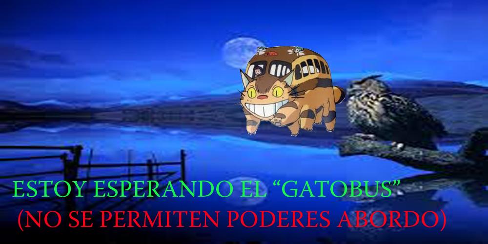 ESTOY ESPERANDO EL GATOBUS