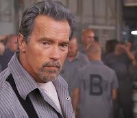 Sylvester Stallone-Arnold Schwarzenegger filmi