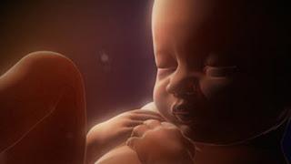 gestacion de un bebe: 32 semanas