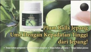 Oriyen Japanese Plum Balls untuk berbagai masalah kesehatan