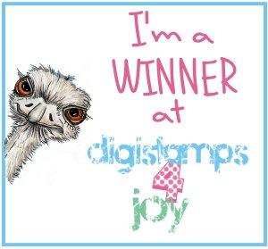 DS4J winner