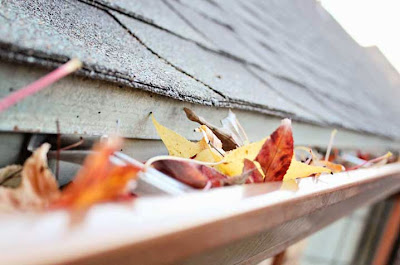 gutters full of leaves and debris