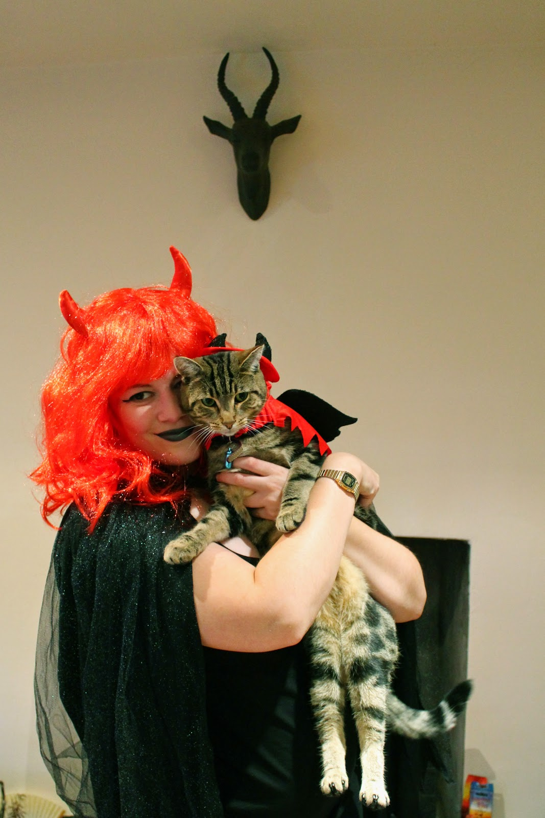 Halloween Devil Costume for Pets Dogs Cats