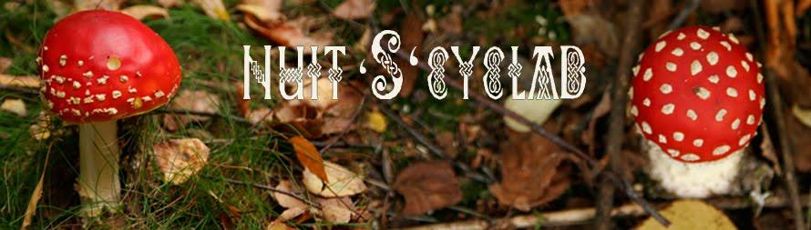 Nuit's'kyclad