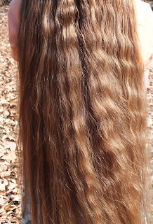 Hair Care and Moroccan Argan Oil