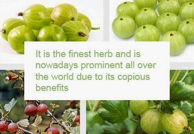 gooseberry health benefits 2