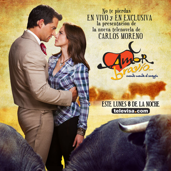 mexican telenovela The telenovelas - latin american soap dramas  more controversial events are being included in the mexican telenovela - and that is a new trend.