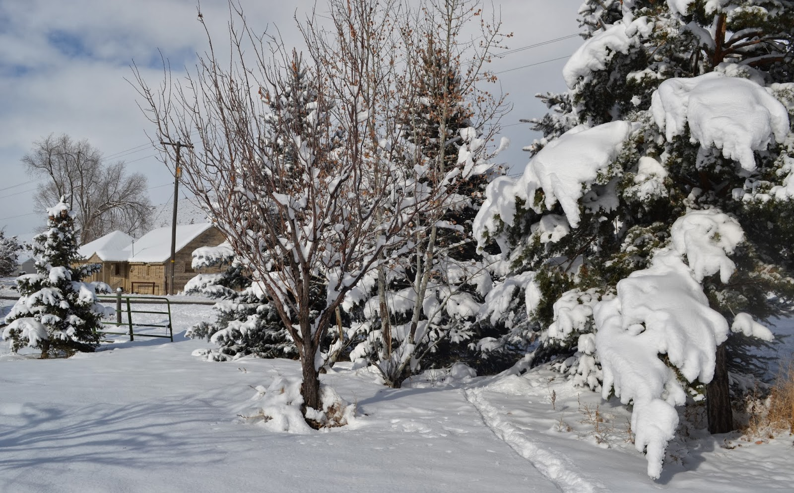 Snow Report and Housing Outlook December 2013