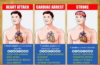 diferencia-entre-un-ataque-al-corazón-paro-cardiaco-y-accidente-cerebrovascular