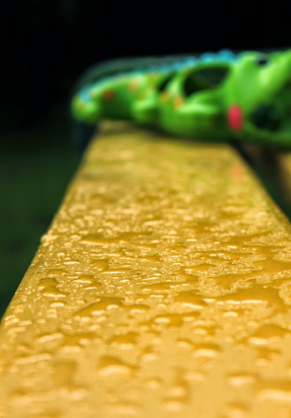 дождь, дача, игрушка