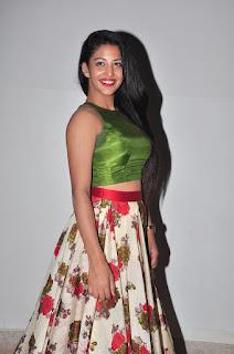 Daksha Nagarkar at hora hori audio 012.JPG