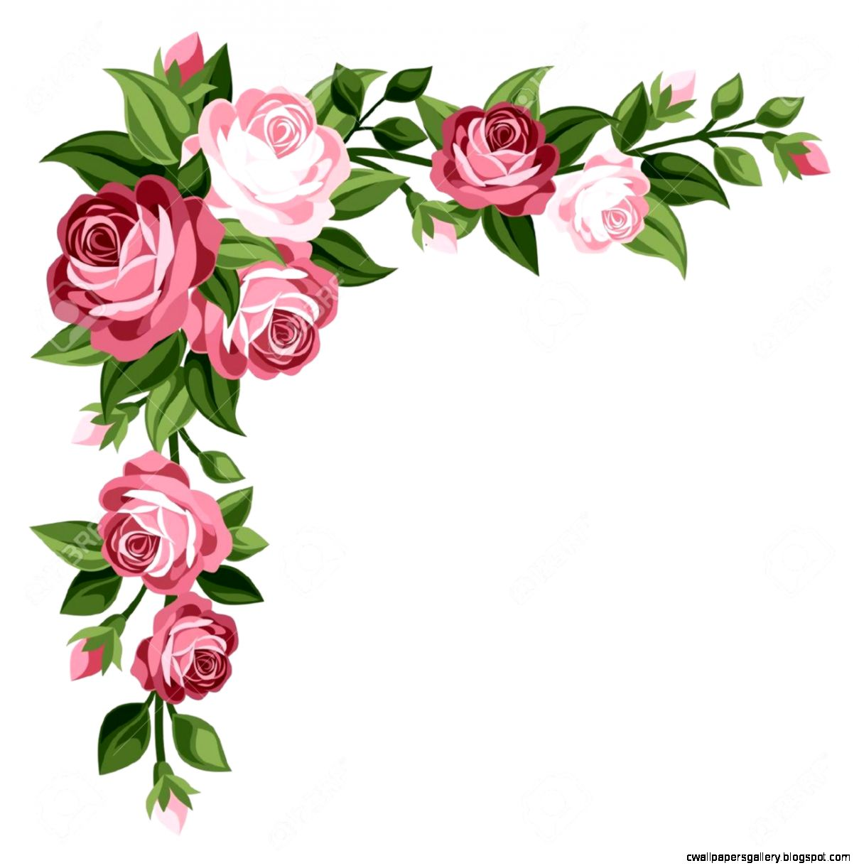 Pink Rose Border Clipart   Clipart Kid
