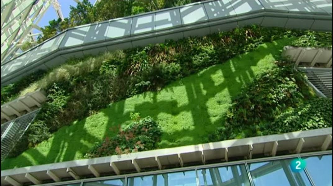 Plano y escala muros verdes o jardines verticales en for Muros verdes verticales