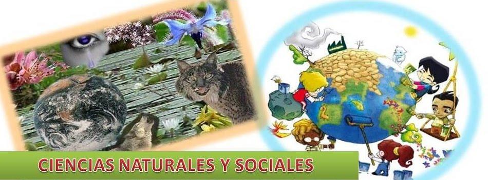 SOCIALS I NATURALS 6è