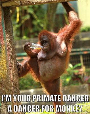 I'm your private dancer