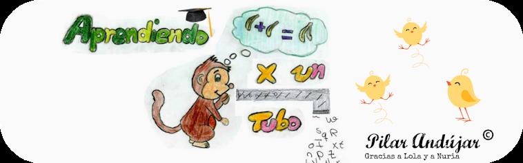 Aprendiendo por un tubo