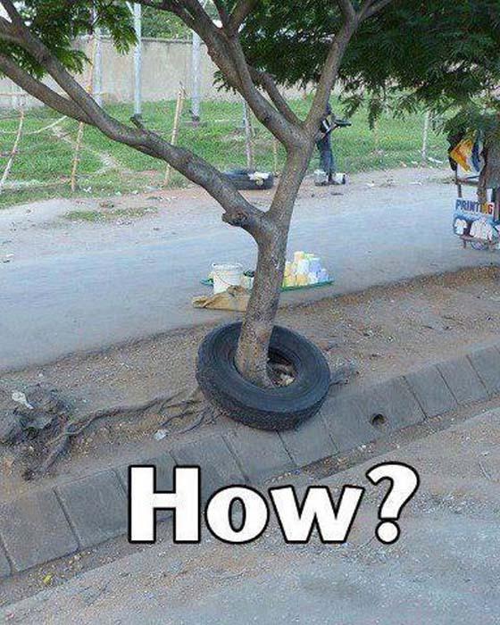 صور مضحكة ضريفة لعيونكم pic+(1).jpg