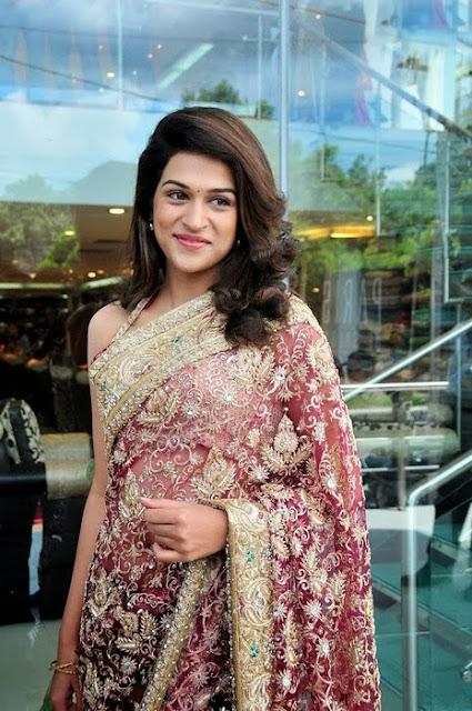 Shraddha Das In Designer Saree