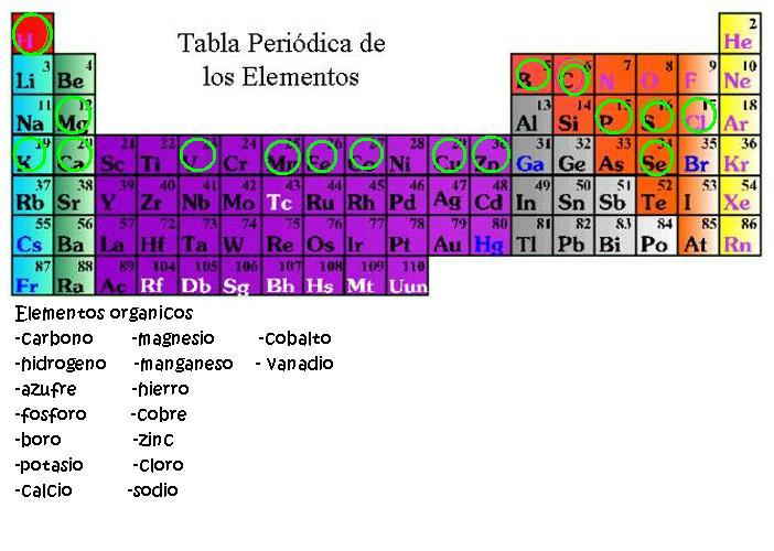 Alain aguilar tabla de los elementos y elementos organicos tabla de los elementos y elementos organicos urtaz Choice Image