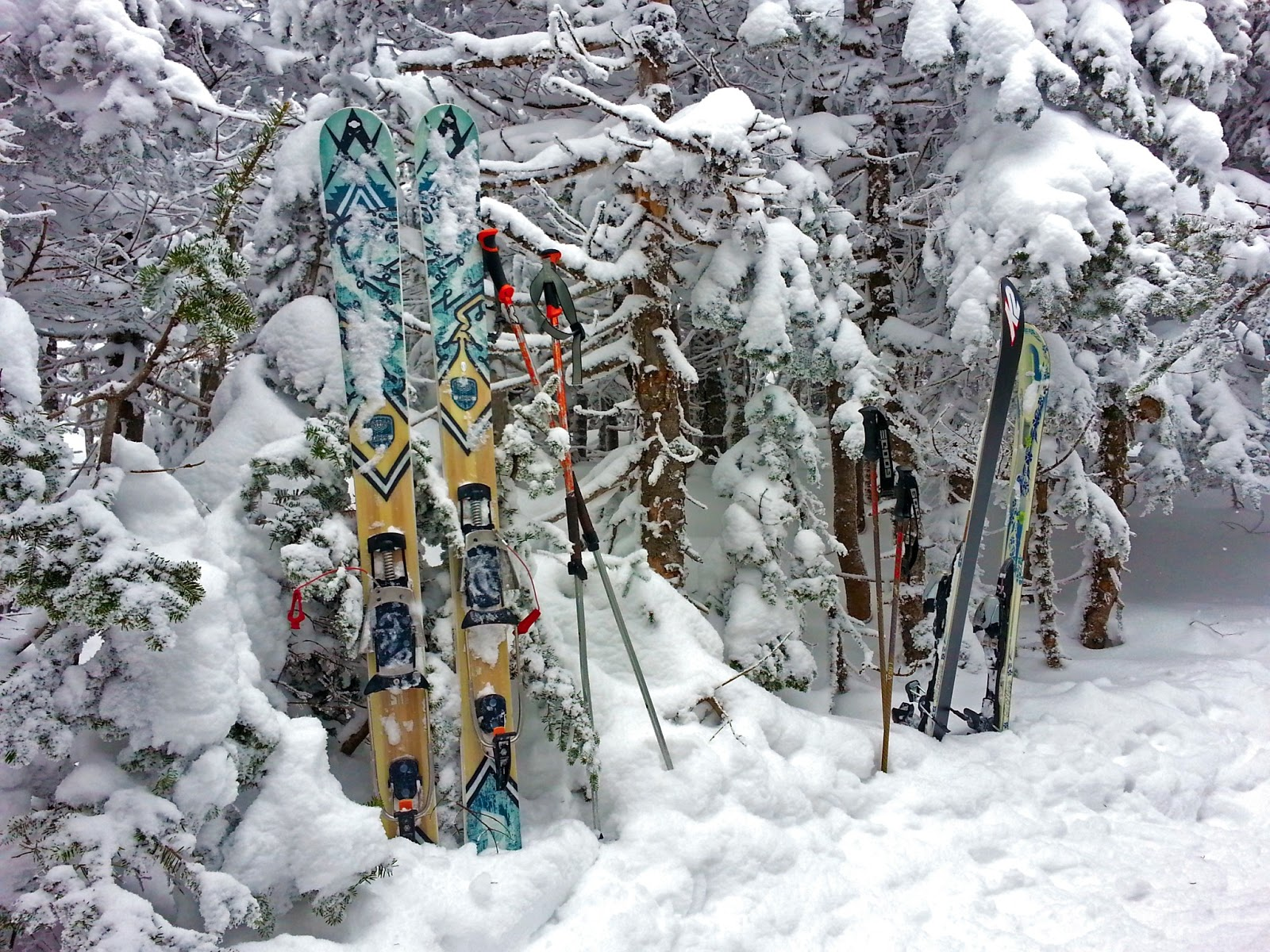 skis in powder