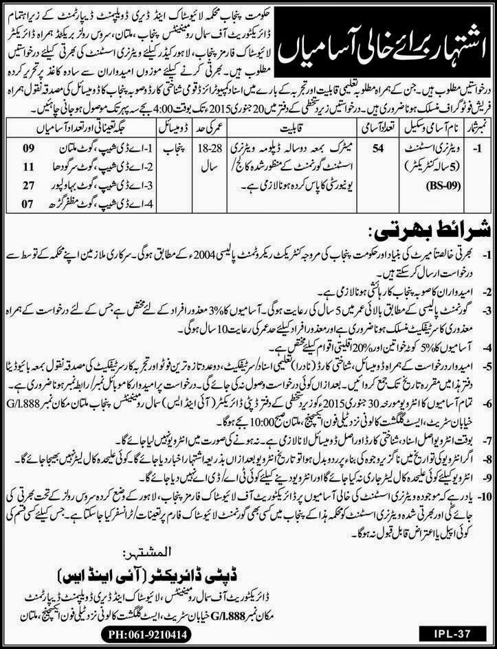 Govt Of Punjab Jobs