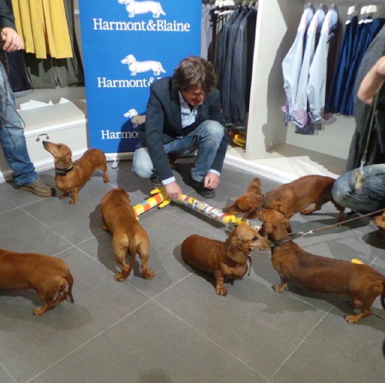 Harmont blaine store opening veronika d for Blaine storage
