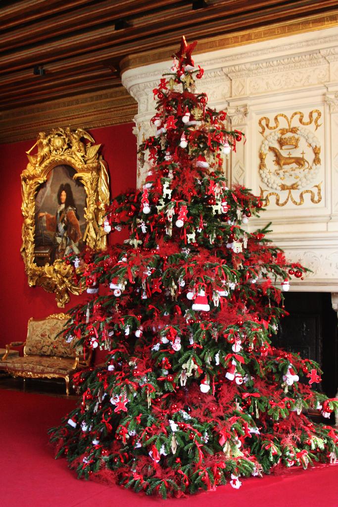 Amboise Daily Photo: a royal Christmas