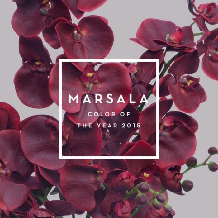 El color marsala es el color del año 2015 según Pantone.