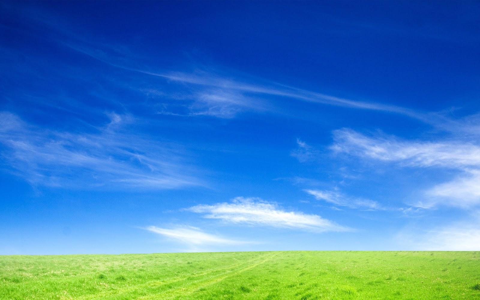 A Blog of One's Own: A Blue True Dream of Sky