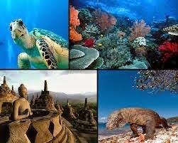Pariwisata Di Indonesia Tempat Wisata Indonesia