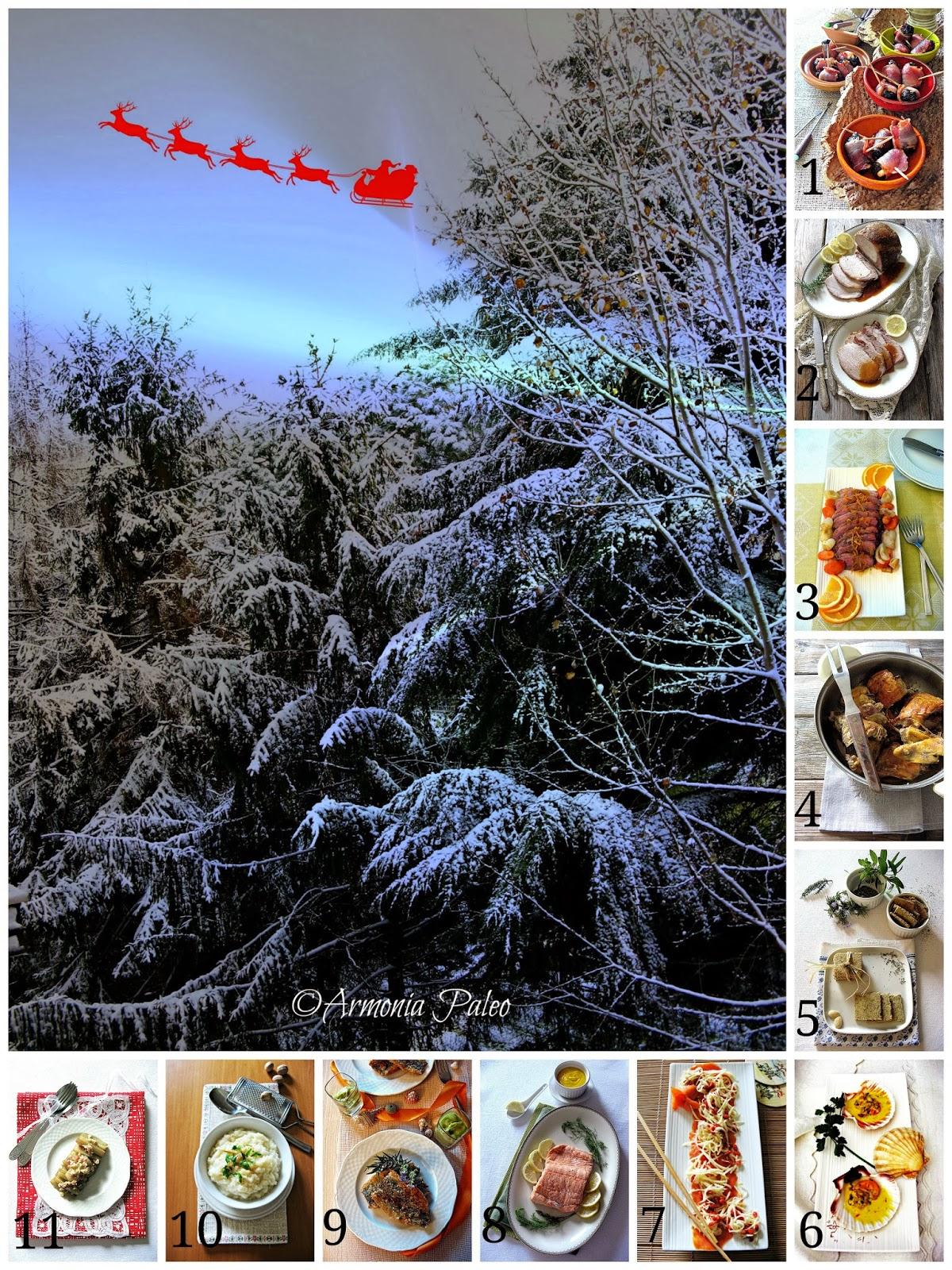 Proposte Menù Natale 2013 di Armonia Paleo