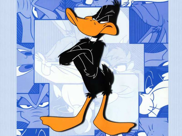 Daffy duck cartoon wallpaper