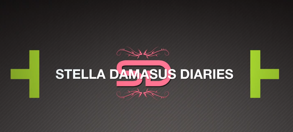 Stella Damasus Diaries