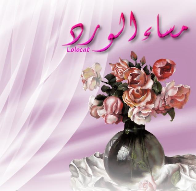 صباحكم ومسائكم حب  احلى شهداويه فى الدنيا - صفحة 31 1NCif-16x-1