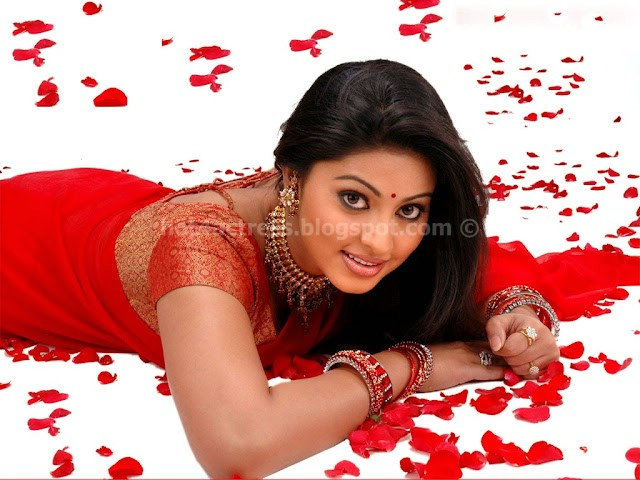 Sneha hot saree pics
