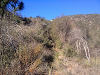 View west toward water tank on the east ridge en route to Summit 2843, Angeles National Forest