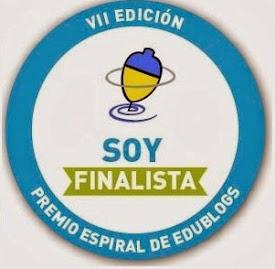 Finalista de los premios Edublogs 2013