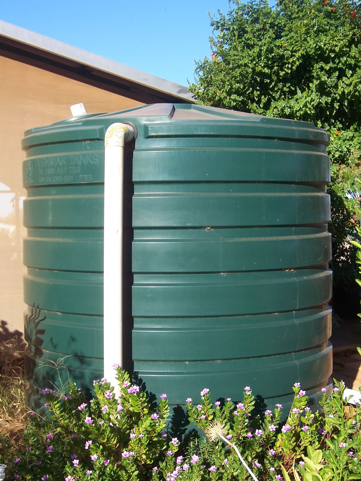 Pretending to Farm: How to Manage a Rain Water Tank