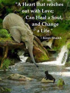 The Spiritual Path