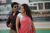 Thimmiri movie photos gallery-thumbnail-1