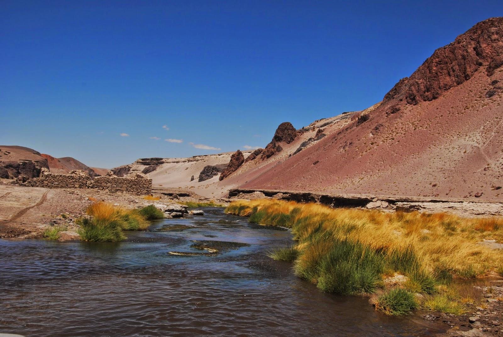 Traversée en 4x4 de la rivière Aguas Negras - Chili
