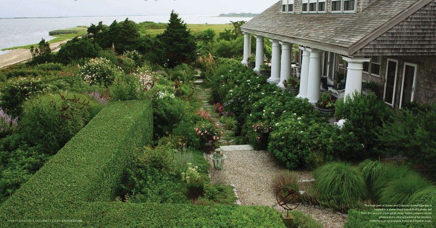 Splendid Sass: GARDEN IN NANTUCKET