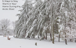 Picture of lots of snow weighing down the trees