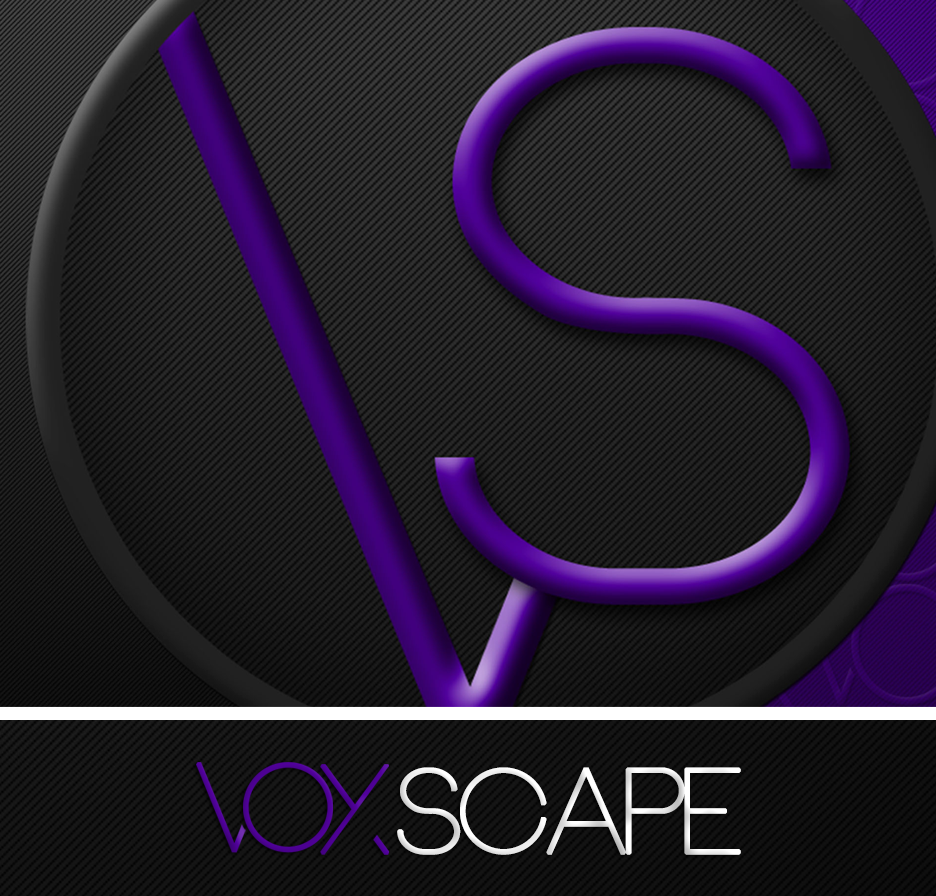 Logo Voxscape studio