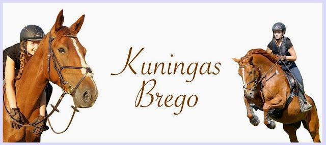 Kuningas Brego