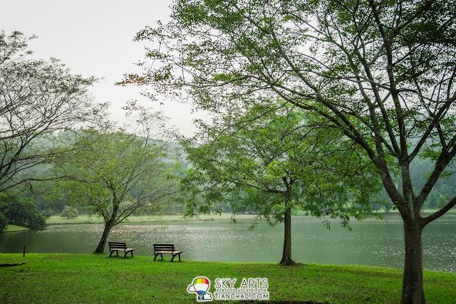 Serene ambiance at Kepong Botanic Garden @ FRIM