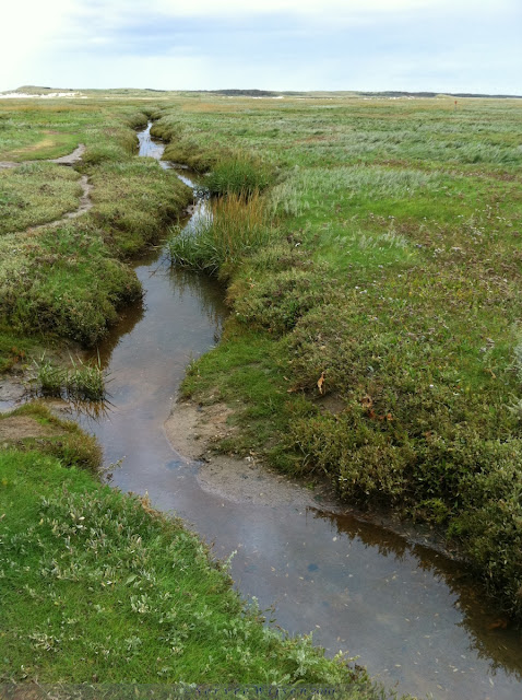 Kreek in de Slufter - Creek in de Slufter